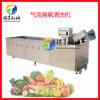 商用鼓泡蔬菜清洗机,学校食堂全自自动洗菜机