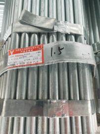 25*1.5牛头牌镀锌管