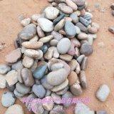 鹅卵石厂家直销 鹅卵石 变压器鹅卵石 鹅卵石滤料
