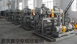 罗茨真空泵,ZJP罗茨真空泵,罗茨泵,ZJP300罗茨真空泵
