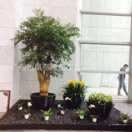 玻璃钢欧式花盆户外组合花钵圆形景观/商业街摆饰