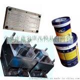 台州黃岩塑料油漆桶模具廠 出口油漆桶模具