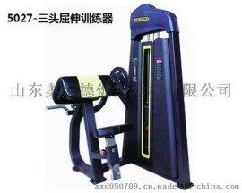 奥信德AXD-5019腹部前屈训练器