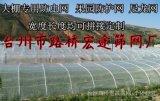 防蟲網、塑料紗網、蔬菜大棚防蟲網、防蟲網罩