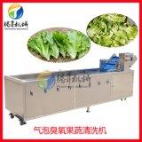 果蔬清洗机械设备  商用大型洗菜机 气浴清洗机