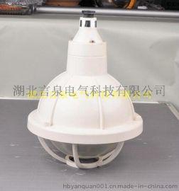 PB09-N100W全塑防水防尘防腐灯