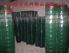 异形电焊网玉米电焊网