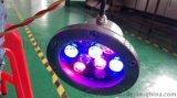 批发广万达LED水底灯GWD--SDD9W