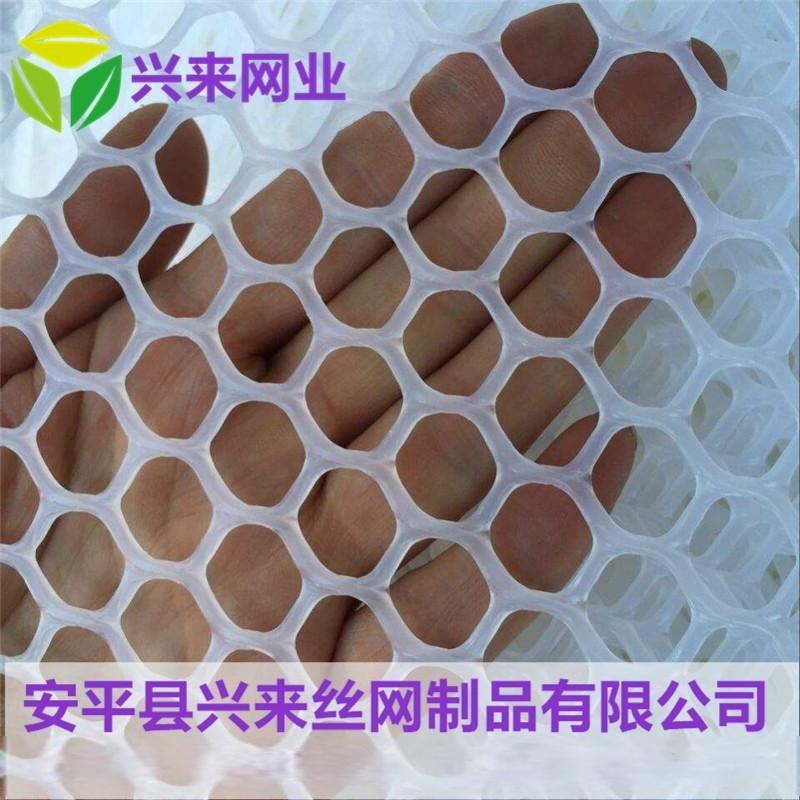 養殖雞牀網 塑料平網廠家 養殖鋪墊網