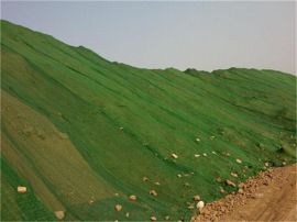 河北绿色防尘网|遮盖网厂家
