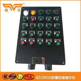 BZC8050防爆防腐操作柱,防爆防腐配电箱