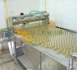 罐頭生產線設備 黃桃罐頭、桔子罐頭加工設備-科信最專業!