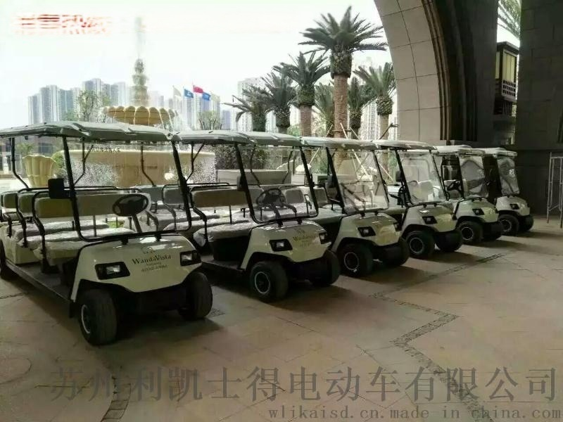 利凱士得廠家直銷兩座電動高爾夫球車LK-02-GF