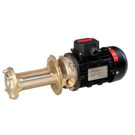 WL系列  立式旋涡泵生产厂家