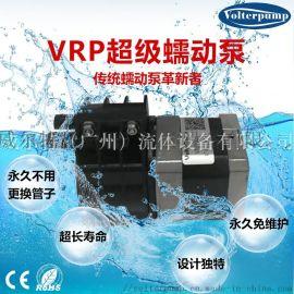 VRP蠕动泵计量泵 不用换管子**免维护高精度