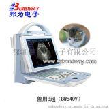 专业兽用医疗设备 10.4寸LED 显示屏 只带充电功能 SUB接口 兽用B超 宠物B超 宠物医疗