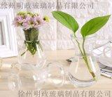 透明玻璃瓶水培植物容器綠蘿養花花瓶乾花插花客廳擺件裝飾小花盆風信子