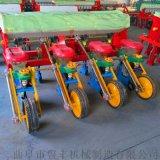 白山2行玉米播种机 自动玉米播种机厂家
