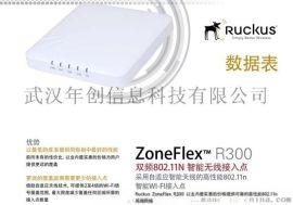 美国优科 Ruckus 901-R300-WW02