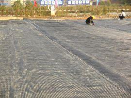 郁南 凸点土工格栅 定制生产 云浮塑料土工格栅 现货
