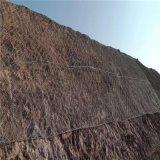 高速公路山体拦截危石护坡主动边坡防护网直接生产厂家