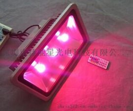 LED泛光灯RGB七彩150W厂家直销