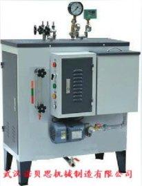 高温蒸汽洗车专用电加热蒸汽发生器,全自动高压蒸汽清洗机