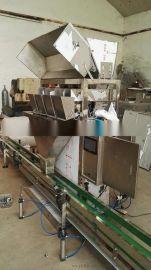 鸡精包装生产线|味精包装生产线-操作简单-三年质保