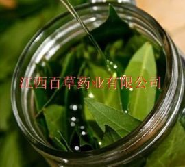 月桂叶油厂家专业生产天然月桂树叶精油