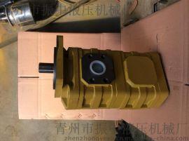 山东CBGJ2/2高压双联泵厂家
