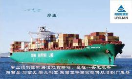 佛山专业新加坡国际海运 新加坡门到门散货拼箱 新加坡海运散货