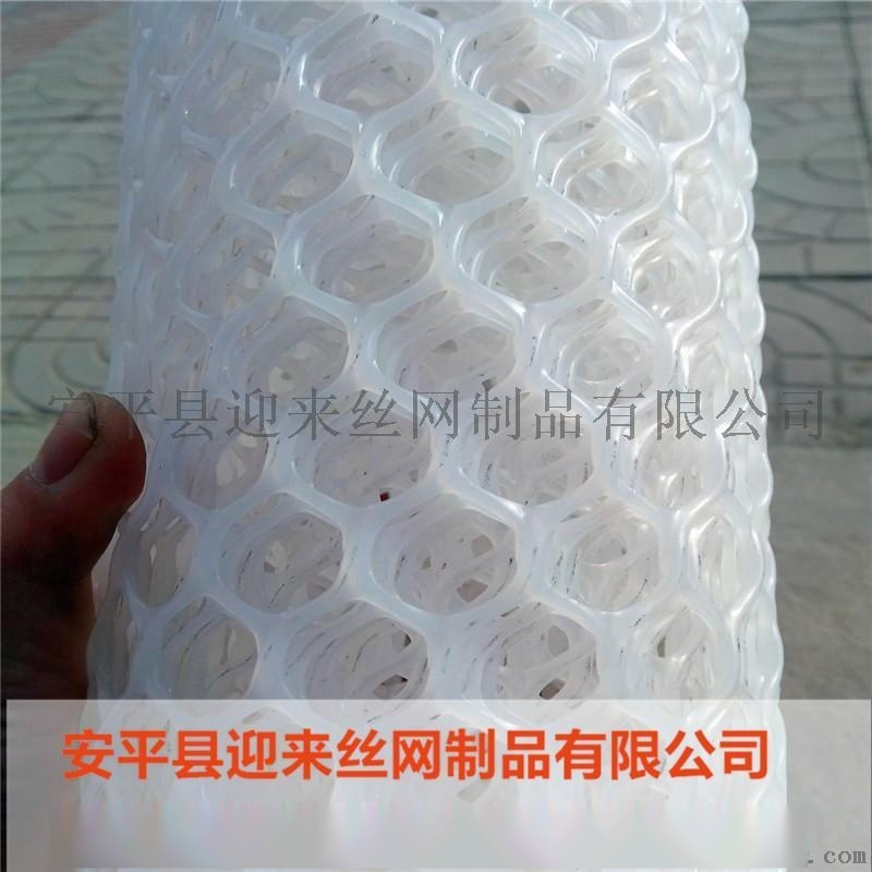 塑料网厂家,现货塑料网,养殖塑料网