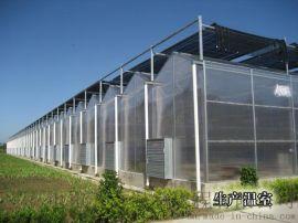 山东五合阳光板温室大棚