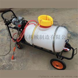电动喷雾器 推车拉管式喷雾器 大棚打药机