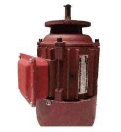 ZDS4.5KW制動電機,葫蘆制動電機, 雙速電機