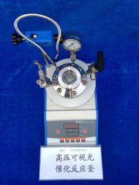 高压可视光催化反应釜(太康WGHX系列)