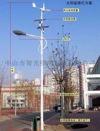LED风光互补太阳能路灯 农村风光互补发电路灯
