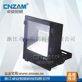 ZGD235LED(40W-50W)投光灯/泛光灯