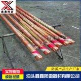 電解離子接地棒銅包鋼離子接地棒中空式電解離子接地極棒現貨