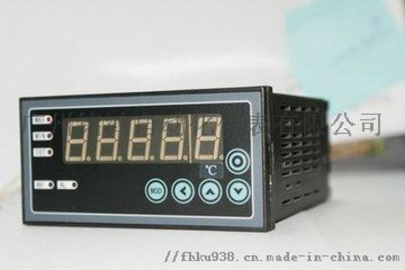 XSEW单通道热工表数显仪表 测量控制仪