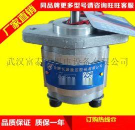 合肥长源液压齿轮泵CBT-F420-花左(螺纹
