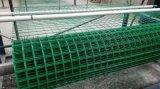 养殖铁丝网厂家批发优质养殖电焊网 荷兰网价格低