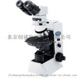 偏光显微镜CX31P