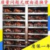 熟食薰雞煙薰爐 不鏽鋼節能環保薰雞機器 加工定制全自動燒烤爐