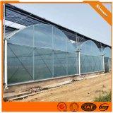 连栋薄膜温室大棚建设 阳光板温室材料