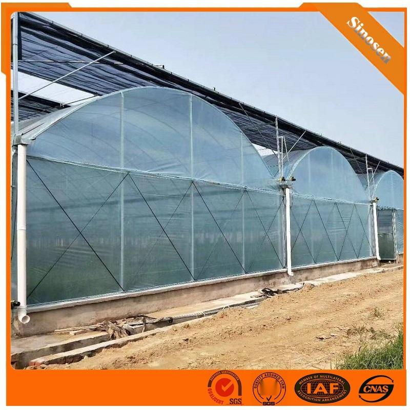 連棟薄膜溫室大棚建設 陽光板溫室材料