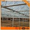 蔬菜阳光阳光温室双拱双膜连栋温室供应薄膜阳光温室