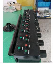 LBZ8030-A2D2B1防爆防腐操作柱