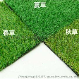河北永恒屋顶人造草坪