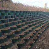 高強土工格室邊坡防護綠化種植